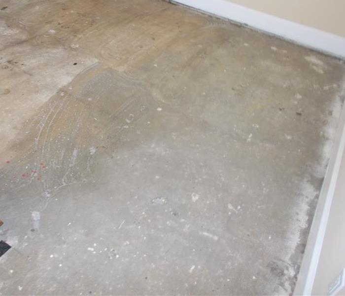 Mold Remedation After
