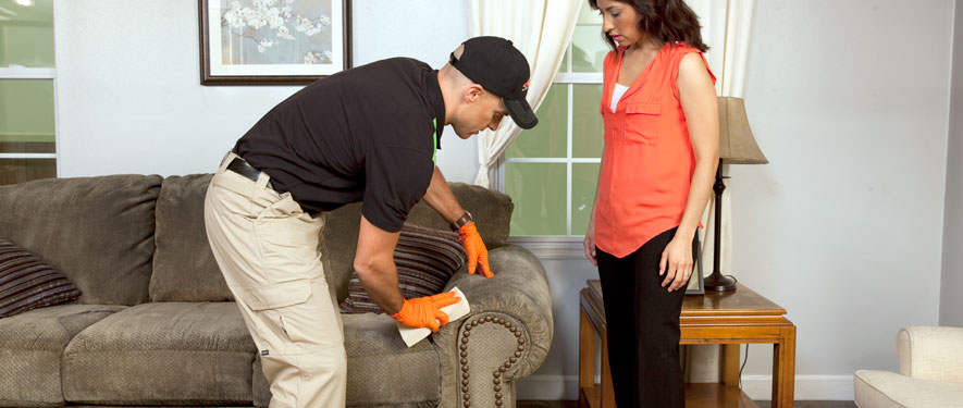 Pascagoula, MS carpet upholstery cleaning