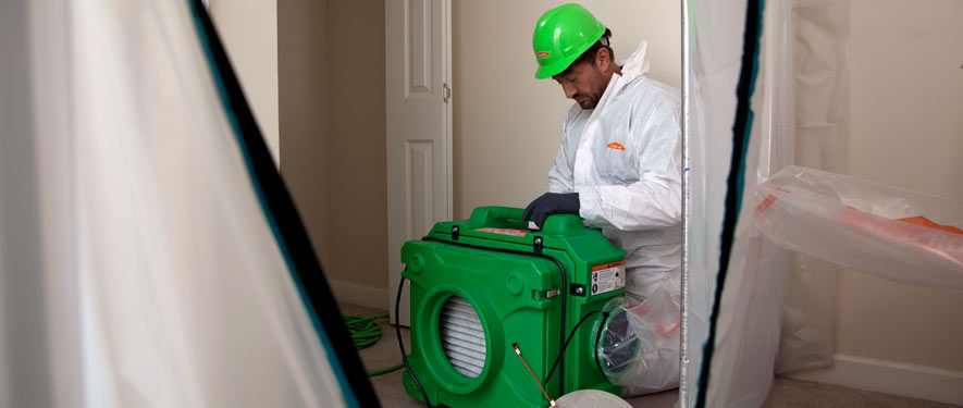 Pascagoula, MS mold cleanup