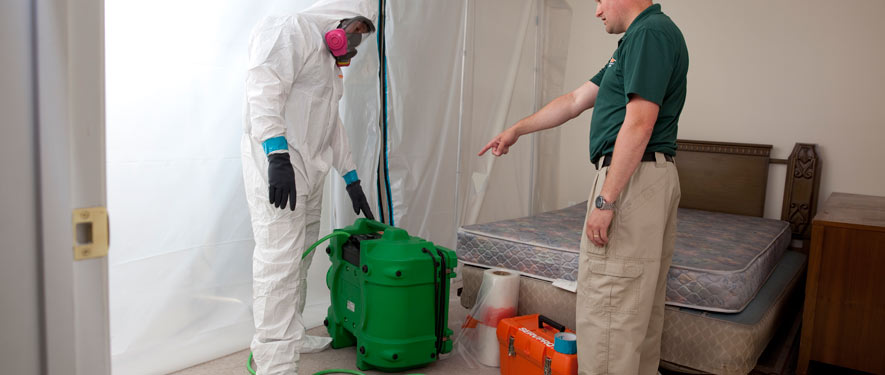 Pascagoula, MS mold removal process